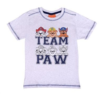 Футболка, сер. PAW Patrol   напис TEAM PAW, Сірий, Disney Польща, 21OZ