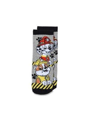 Шкарпетки, з АБС   PAW  PATROL, Сірий, Sun City Франція, 21OZ